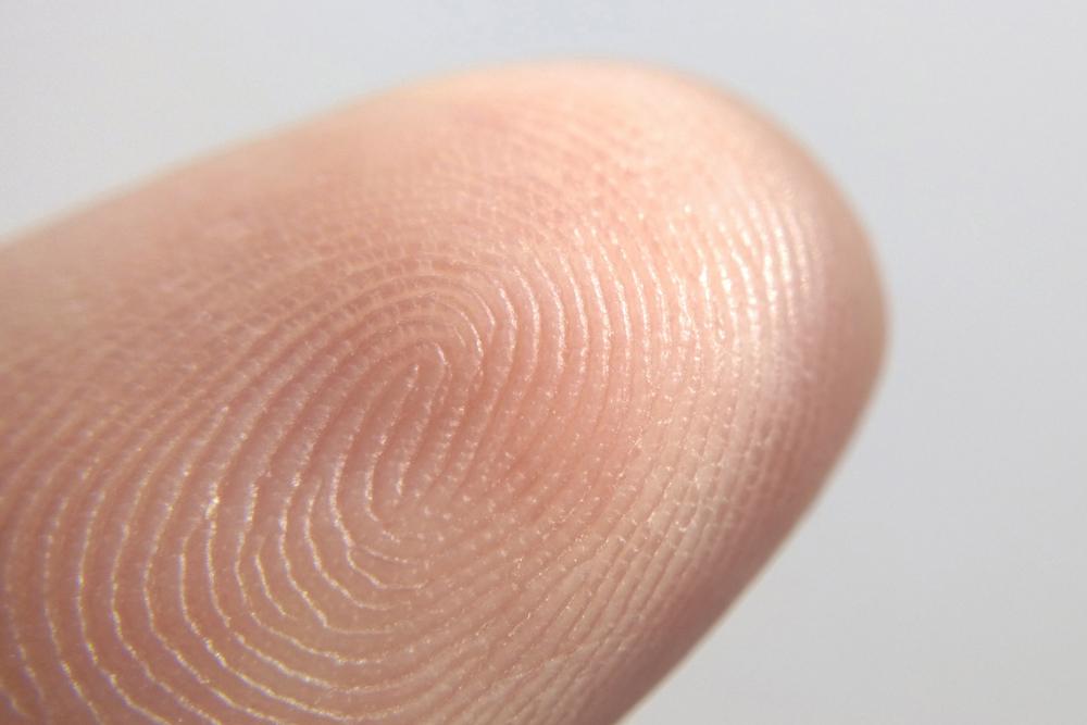 How fingerprints are formed